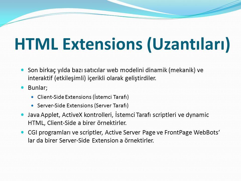 HTML Extensions (Uzantıları) Son birkaç yılda bazı satıcılar web modelini dinamik (mekanik) ve interaktif (etkileşimli) içerikli olarak geliştirdiler.