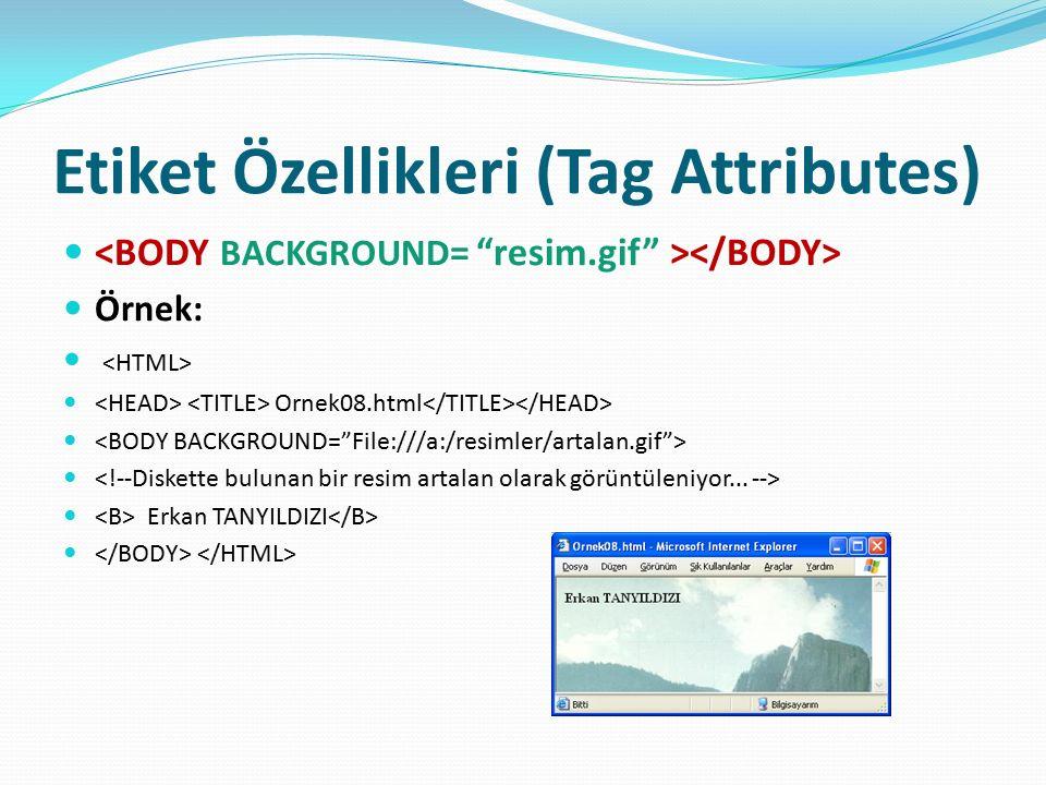 Etiket Özellikleri (Tag Attributes) Örnek: Ornek08.html Erkan TANYILDIZI