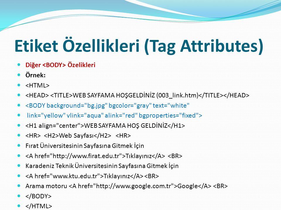 Etiket Özellikleri (Tag Attributes) Diğer Özelikleri Örnek: WEB SAYFAMA HOŞGELDİNİZ (003_link.htm) <BODY background=