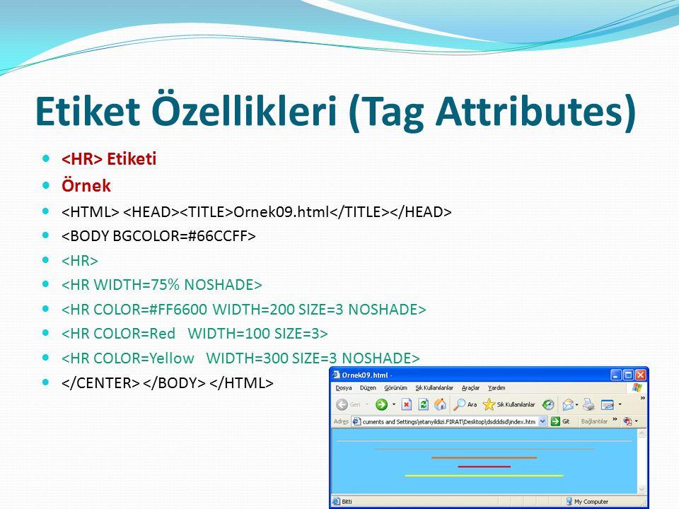 Etiket Özellikleri (Tag Attributes) Etiketi Örnek Ornek09.html