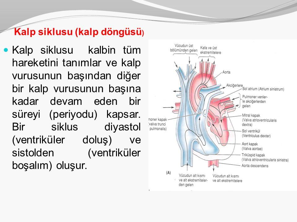 Kalp siklusu (kalp döngüsü ) Kalp siklusu kalbin tüm hareketini tanımlar ve kalp vurusunun başından diğer bir kalp vurusunun başına kadar devam eden b