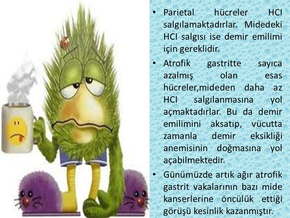Parietal hücreler HCI salgılamaktadırlar. Midedeki HCI salgısı ise demir emilimi için gereklidir. Atrofik gastritte sayıca azalmış olan esas hücreler,