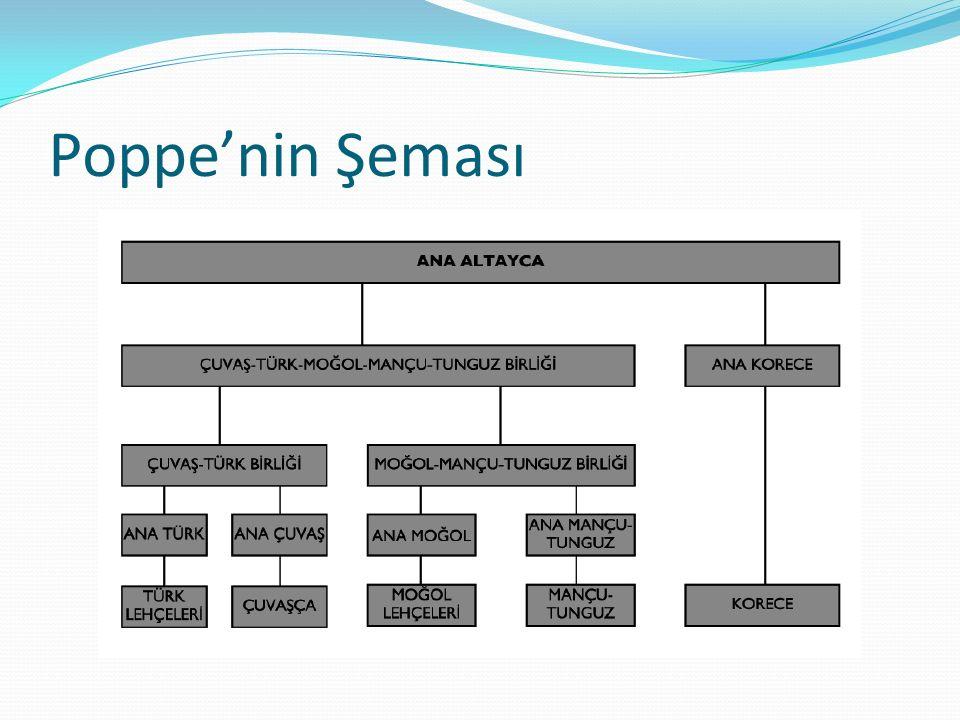 Poppe'nin Şeması