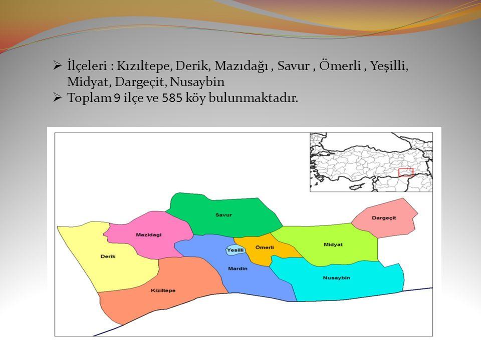  İlçeleri : Kızıltepe, Derik, Mazıdağı, Savur, Ömerli, Yeşilli, Midyat, Dargeçit, Nusaybin  Toplam 9 ilçe ve 585 köy bulunmaktadır.