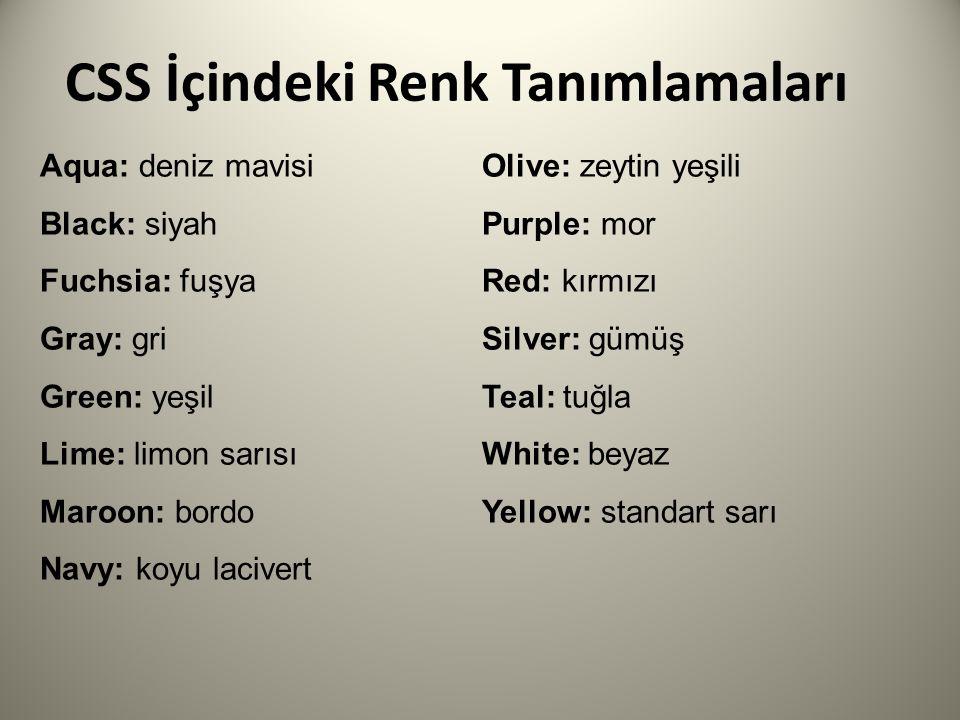 CSS İçindeki Renk Tanımlamaları Aqua: deniz mavisi Black: siyah Fuchsia: fuşya Gray: gri Green: yeşil Lime: limon sarısı Maroon: bordo Navy: koyu lacivert Olive: zeytin yeşili Purple: mor Red: kırmızı Silver: gümüş Teal: tuğla White: beyaz Yellow: standart sarı