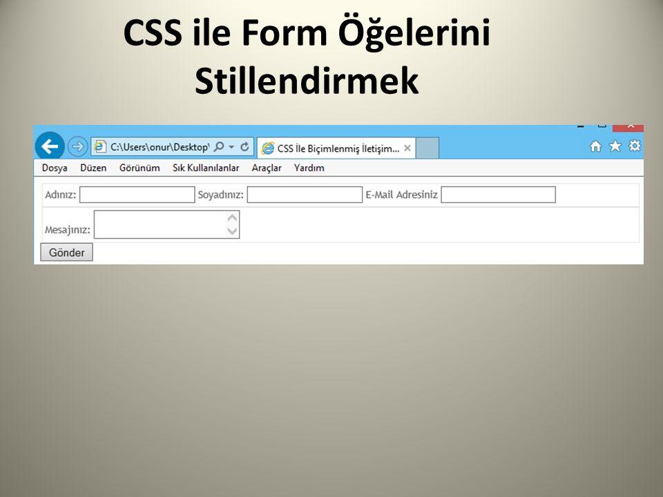 CSS ile Form Öğelerini Stillendirmek