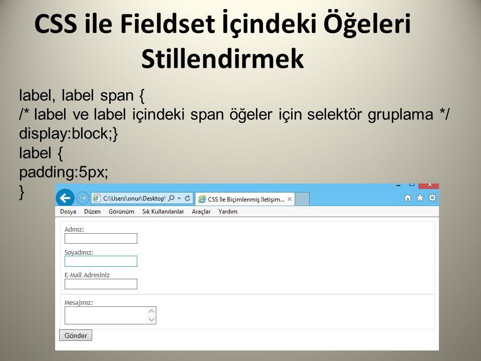 CSS ile Fieldset İçindeki Öğeleri Stillendirmek label, label span { /* label ve label içindeki span öğeler için selektör gruplama */ display:block;} l