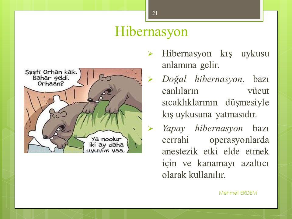 Hibernasyon Mehmet ERDEM 21  Hibernasyon kış uykusu anlamına gelir.