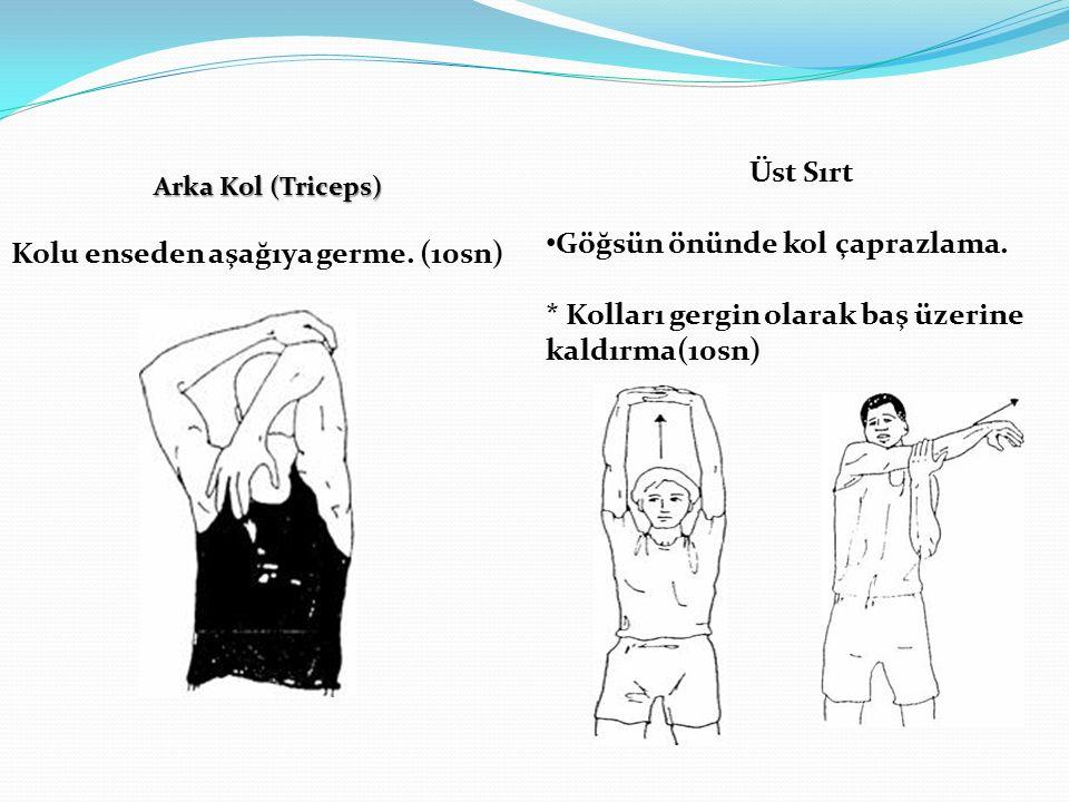 Arka Kol (Triceps) Kolu enseden aşağıya germe. (10sn) Üst Sırt Göğsün önünde kol çaprazlama. * Kolları gergin olarak baş üzerine kaldırma(10sn)