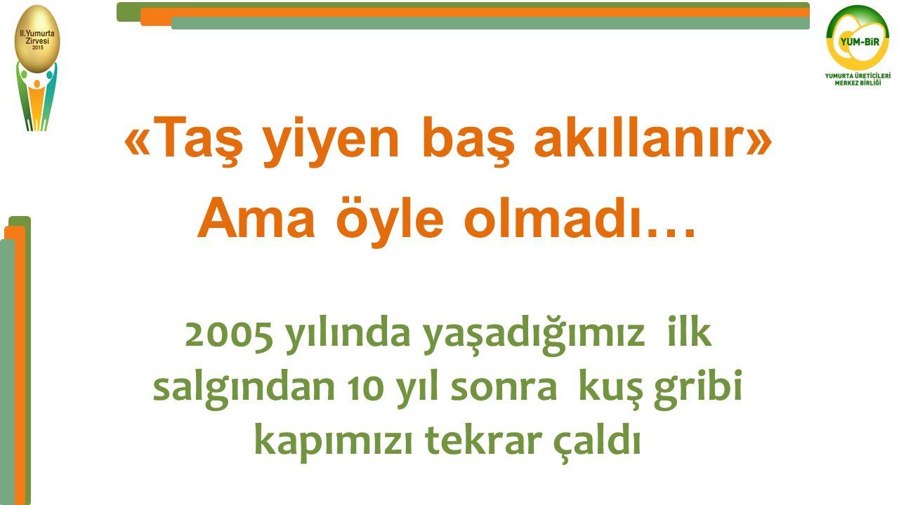 5- Türkiye'de ilk Kuş Gribi salgını «Taş yiyen baş akıllanır» Ama öyle olmadı… 2005 yılında yaşadığımız ilk salgından 10 yıl sonra kuş gribi kapımızı