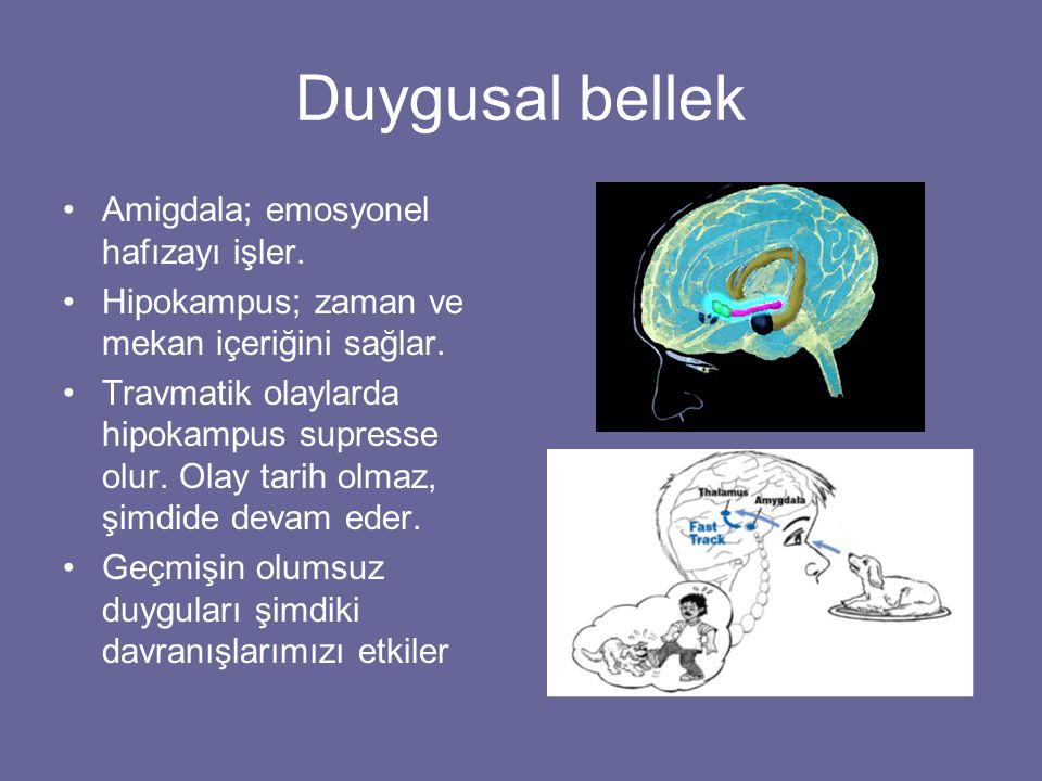 Duygusal bellek Amigdala; emosyonel hafızayı işler. Hipokampus; zaman ve mekan içeriğini sağlar. Travmatik olaylarda hipokampus supresse olur. Olay ta