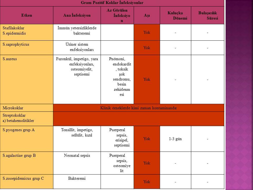 Gram Pozitif Koklar İnfeksiyonlar EtkenAna İnfeksiyon Az Görülen İnfeksiyo n Aşı Kuluçka Dönemi Bulaşıcılık Süresi Stafilakoklar S.epidermidis İmmün y
