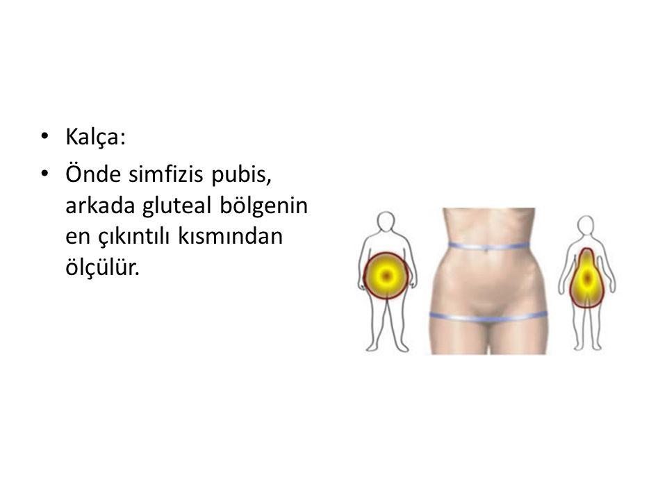Kalça: Önde simfizis pubis, arkada gluteal bölgenin en çıkıntılı kısmından ölçülür.