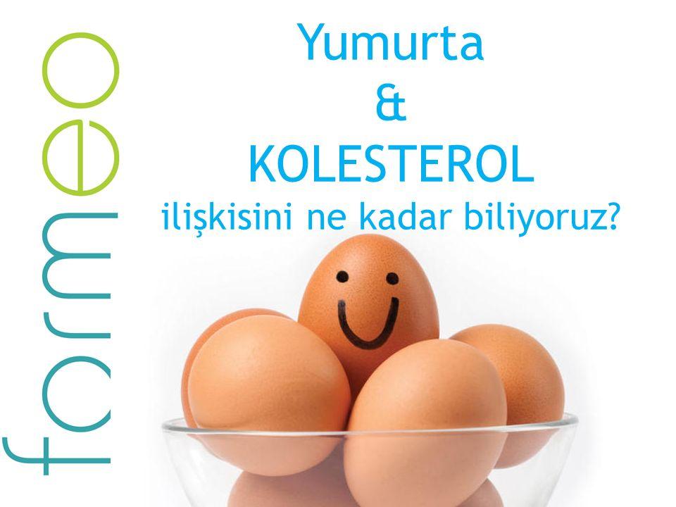 Yumurta & KOLESTEROL ilişkisini ne kadar biliyoruz?