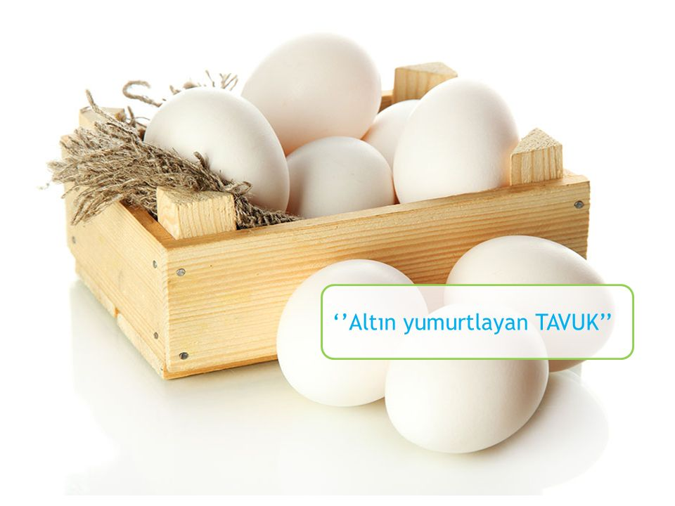 Yumurta & YAŞLILIK Protein veya aminoasit alımının yaşlılardaki vücut kas kütlesini uyardığı kanıtlanmıştır.
