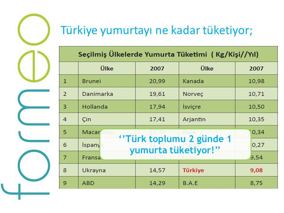 Türkiye yumurtayı ne kadar tüketiyor; ''Türk toplumu 2 günde 1 yumurta tüketiyor!''