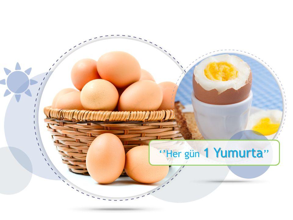 1 Yumurta ''Her gün 1 Yumurta ''