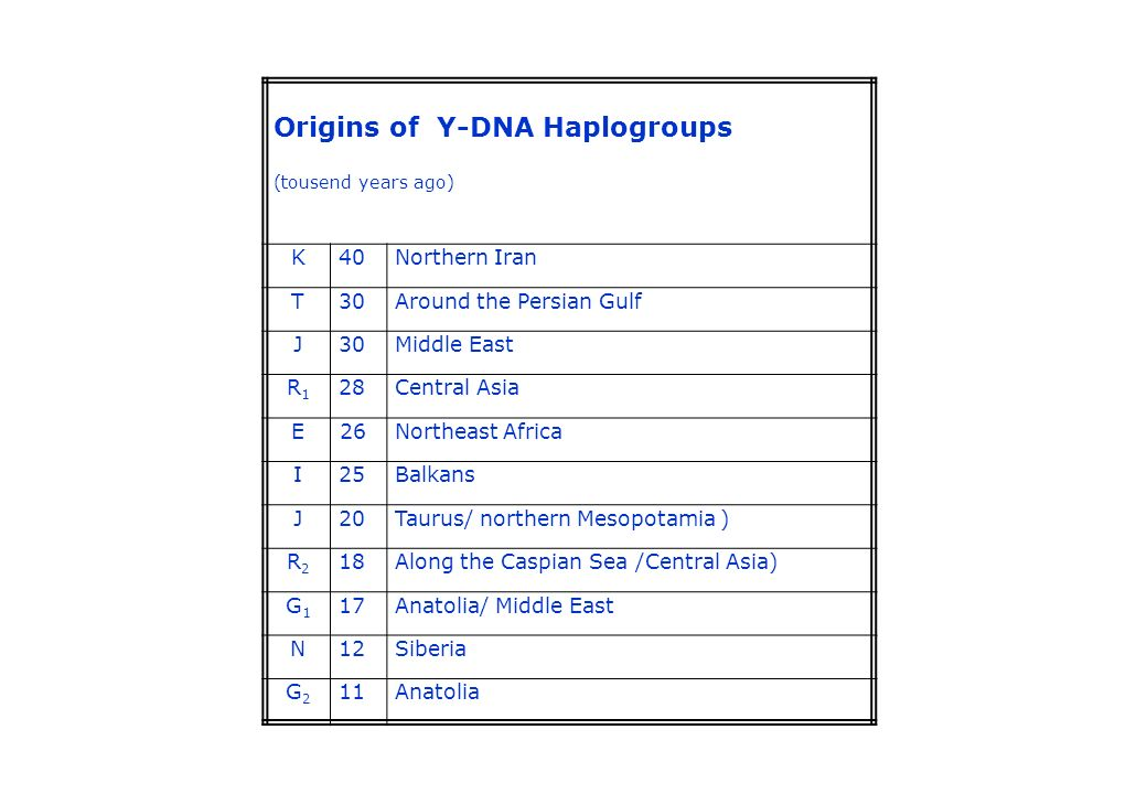Origins of Y-DNA Haplogroups (tousend years ago) K40Northern Iran T30Around the Persian Gulf J30Middle East R1R1 28Central Asia E26Northeast Africa I2