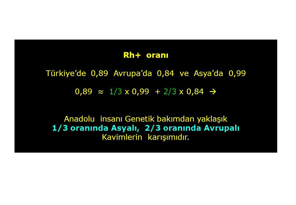 Rh+ oranı Türkiye'de 0,89 Avrupa'da 0,84 ve Asya'da 0,99 0,89 ≈ 1/3 x 0,99 + 2/3 x 0,84  Anadolu insanı Genetik bakımdan yaklaşık 1/3 oranında Asyalı, 2/3 oranında Avrupalı Kavimlerin karışımıdır.