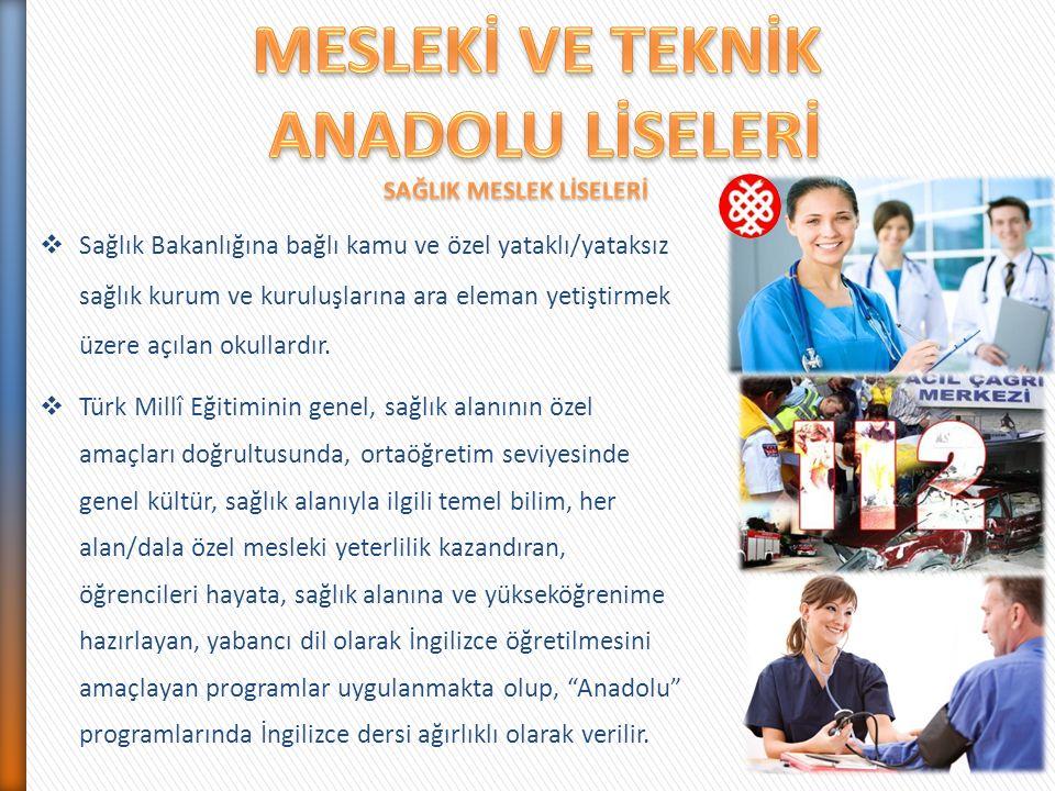  Sağlık Bakanlığına bağlı kamu ve özel yataklı/yataksız sağlık kurum ve kuruluşlarına ara eleman yetiştirmek üzere açılan okullardır.  Türk Millî Eğ