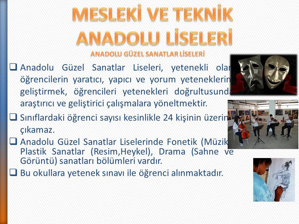  Anadolu Güzel Sanatlar Liseleri, yetenekli olan öğrencilerin yaratıcı, yapıcı ve yorum yeteneklerini geliştirmek, öğrencileri yetenekleri doğrultusu