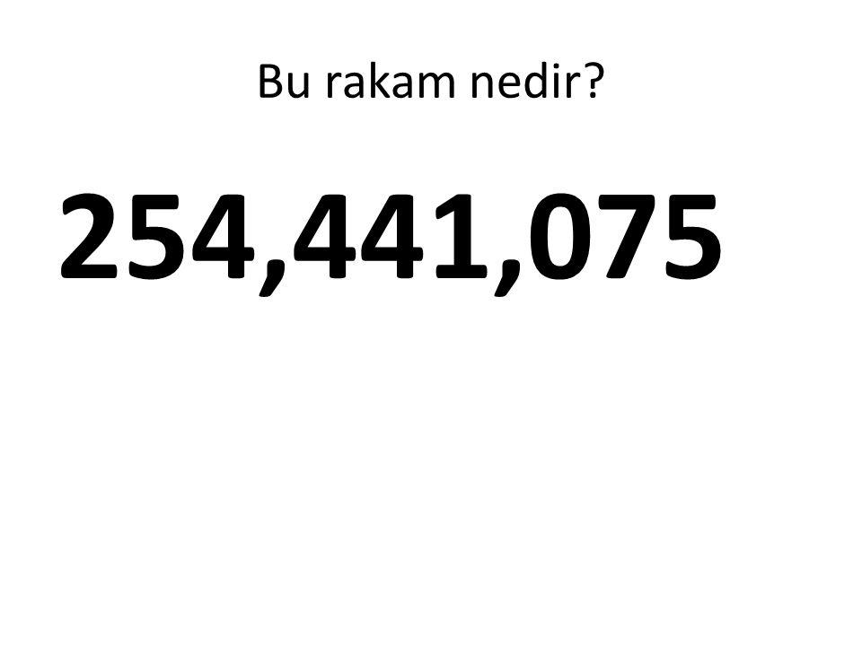 Bu rakam nedir? 254,441,075