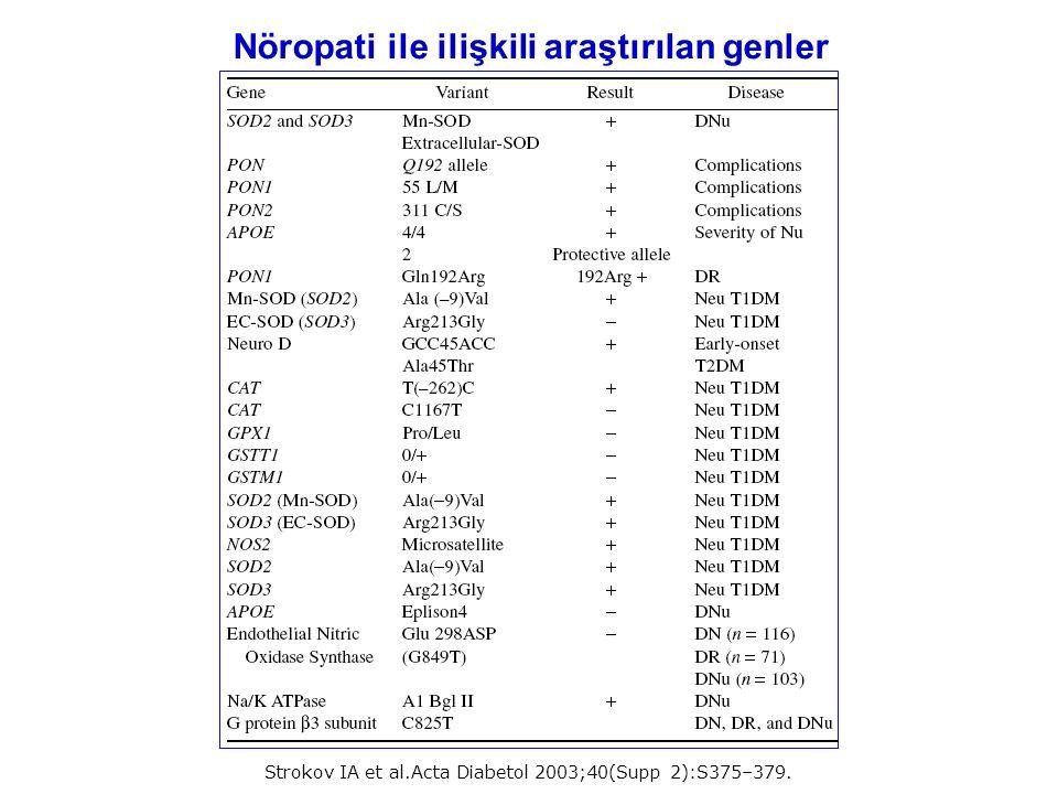 Nöropati ile ilişkili araştırılan genler Strokov IA et al.Acta Diabetol 2003;40(Supp 2):S375–379.