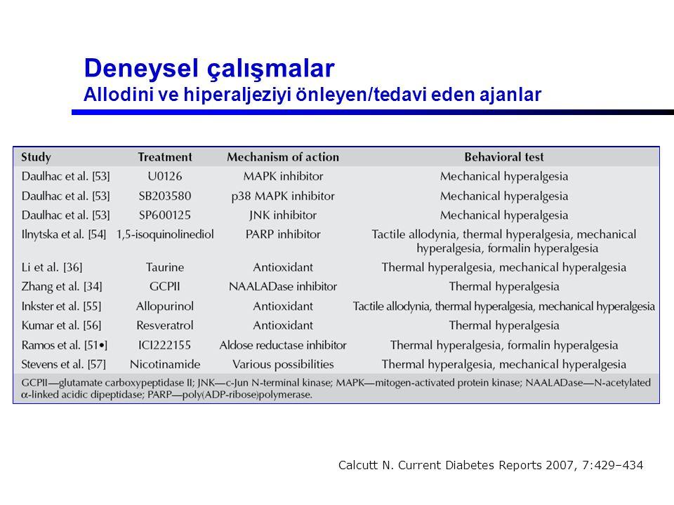 Deneysel çalışmalar Allodini ve hiperaljeziyi önleyen/tedavi eden ajanlar Calcutt N. Current Diabetes Reports 2007, 7:429–434