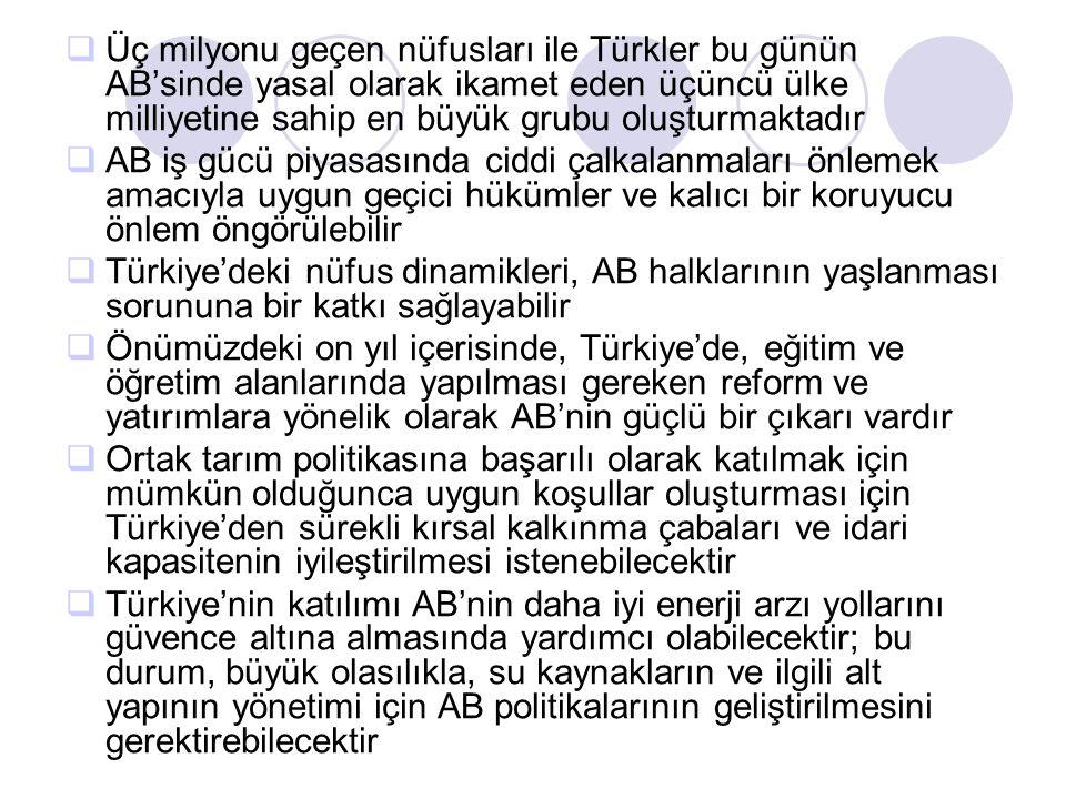  Üç milyonu geçen nüfusları ile Türkler bu günün AB'sinde yasal olarak ikamet eden üçüncü ülke milliyetine sahip en büyük grubu oluşturmaktadır  AB