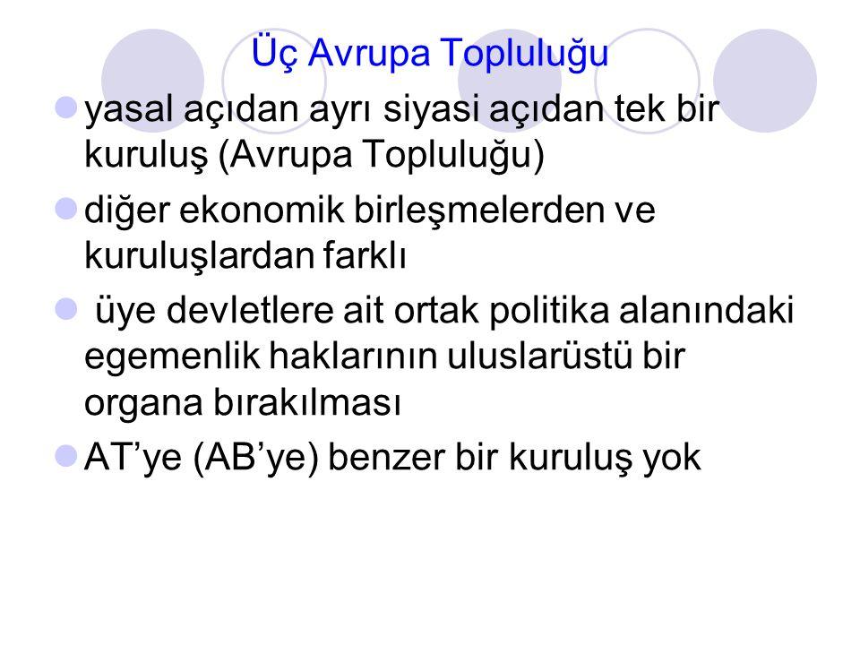 Türkiye'nin AB'ye üyeliği: AB perspektifi [Etki Raporundan]  Türkiye'nin katılımı, kültürel ve dini özellikleri ile birlikte, nüfusu, büyüklüğü, coğrafi konumu, ekonomik, güvenlik ve askeri potansiyelinin birleşik etkisinden dolayı önceki genişlemelerden farklı  Bu etkenler, Türkiye'ye bölgesel ve uluslar arası istikrara katkıda bulunma kapasitesi vermekte  Geleneksel olarak istikrarsız ve gerilimli olarak nitelendirilmekte olan bölgelerde AB'nin kendisinin orta vadede deneyimli bir dış politika oyuncusu haline gelmek yolunda katkı sağlayacak  Çoğunlukla Müslüman bir nüfusa sahip olmakla birlikte özgürlük, demokrasi, insan haklarına ve temel özgürlüklere saygı ve hukukun üstünlüğü gibi temel ilkelere bağlı kalan önemli bir model ülke olabilecektir  Türkiye'nin katılımı, genişlemiş AB'de, en son genişlemeye benzer bir şekilde, bölgesel ve ekonomik farklılıkları artırabilecek ve uyum politikası için büyük bir sıkıntı oluşturabilecektir.