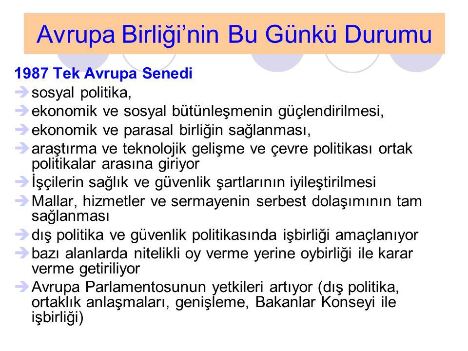 Genel Değerlendirme Türkiye için AB olmazsa olmaz bir seçenek değildir Yaşanılan değişimin içeriğini ve yönünü belirleyen, hızını artıran bir etki yapmaktadır Üyelik sürecinde yapılan reformlar Türkiye'nin ekonomik, siyasal ve sosyal kalkınmasına katkı yaptığı ölçüde takdir edilmektedir Türkiye'nin ulusal hassasiyetleri, taviz vermesinin söz konusu olmadığı alanlarda yapılan zorlamalar AB üyeliğini bir tercih olmaktan çıkaracaktır  AB, Türkiye'ye diğer ülkelere kıyasla hep farklı yaklaşmıştır [tarihi, dini, kültürel, potansiyel güçle ilgili nedenler baskın olmuştur; ekonomik ve siyasi nedenler mazeret olmuştur]  AB için Türkiye, vazgeçilmesi zor bir ülkedir  Bu kozun iyi kullanılması gerekir