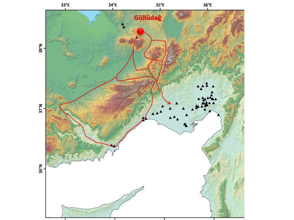 Mezhyrich (Ukrayna) 1965 yılında bir çiftçinin arazisi içerisinde bulduğu mamut kemikleri sonrasında yapılan arkeolojik kazılar alanının tarihöncesi bir kamp/konaklama merkezi olduğu anlaşılmıştır.