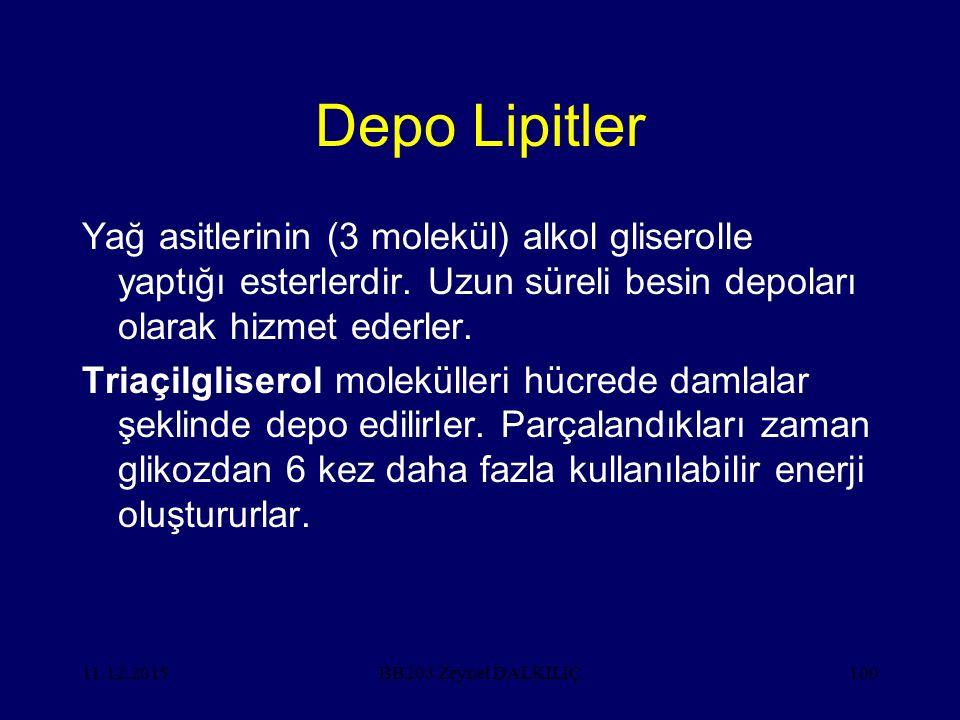 11.12.2015100 Depo Lipitler Yağ asitlerinin (3 molekül) alkol gliserolle yaptığı esterlerdir. Uzun süreli besin depoları olarak hizmet ederler. Triaçi