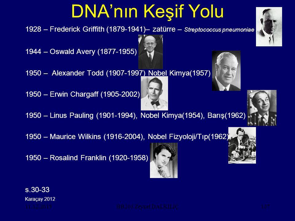 11.12.2015107 DNA'nın Keşif Yolu 1928 – Frederick Griffith (1879-1941)– zatürre – Streptococcus pneumoniae 1944 – Oswald Avery (1877-1955) 1950 – Alexander Todd (1907-1997) Nobel Kimya(1957) 1950 – Erwin Chargaff (1905-2002) 1950 – Linus Pauling (1901-1994), Nobel Kimya(1954), Barış(1962) 1950 – Maurice Wilkins (1916-2004), Nobel Fizyoloji/Tıp(1962) 1950 – Rosalind Franklin (1920-1958) s.30-33 BB203 Zeynel DALKILIÇ Karaçay 2012