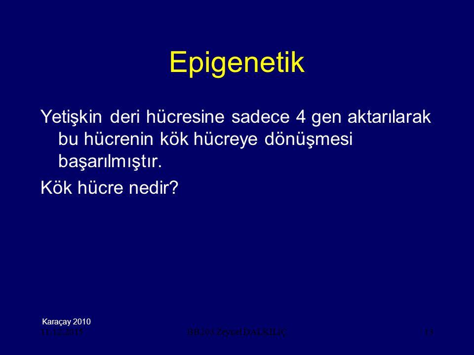 11.12.201513 Epigenetik Yetişkin deri hücresine sadece 4 gen aktarılarak bu hücrenin kök hücreye dönüşmesi başarılmıştır. Kök hücre nedir? BB203 Zeyne
