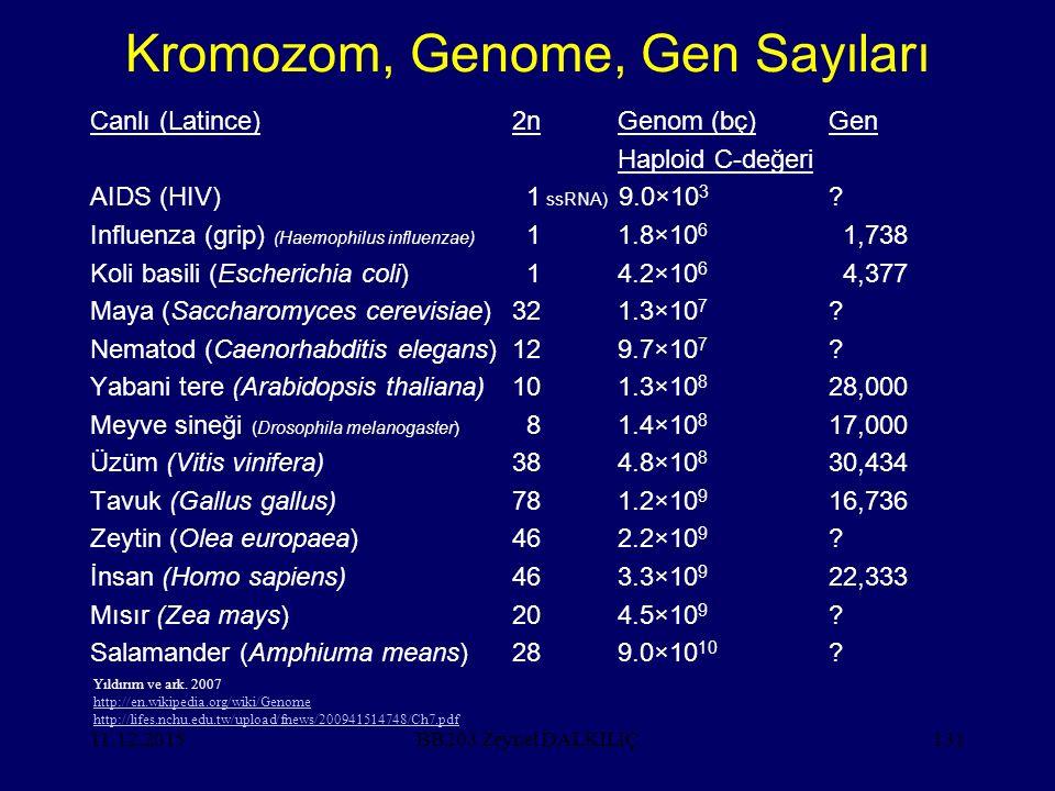 11.12.2015131 Kromozom, Genome, Gen Sayıları Canlı (Latince)2nGenom (bç)Gen Haploid C-değeri AIDS (HIV) 1 ssRNA) 9.0×10 3 .