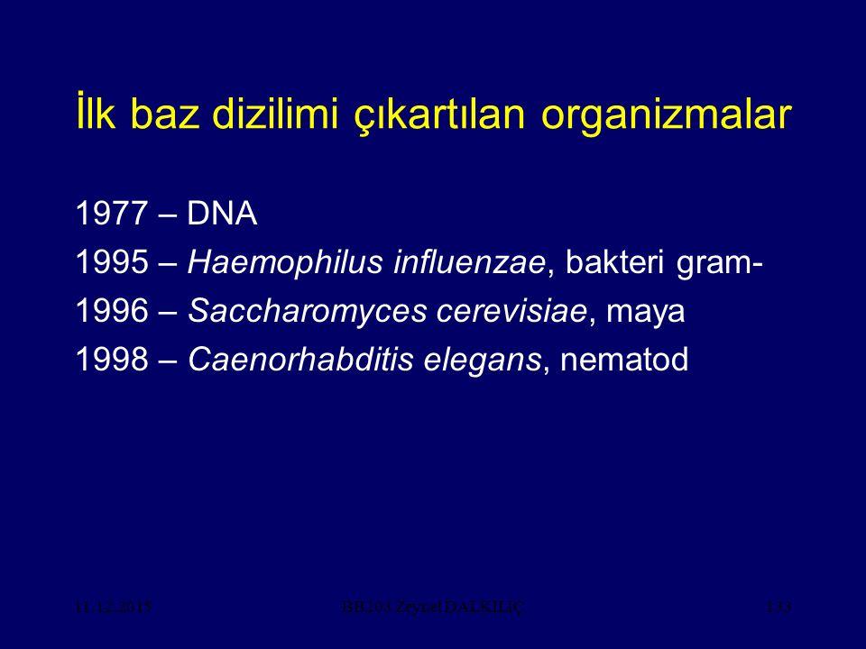 11.12.2015133 İlk baz dizilimi çıkartılan organizmalar 1977 – DNA 1995 – Haemophilus influenzae, bakteri gram- 1996 – Saccharomyces cerevisiae, maya 1