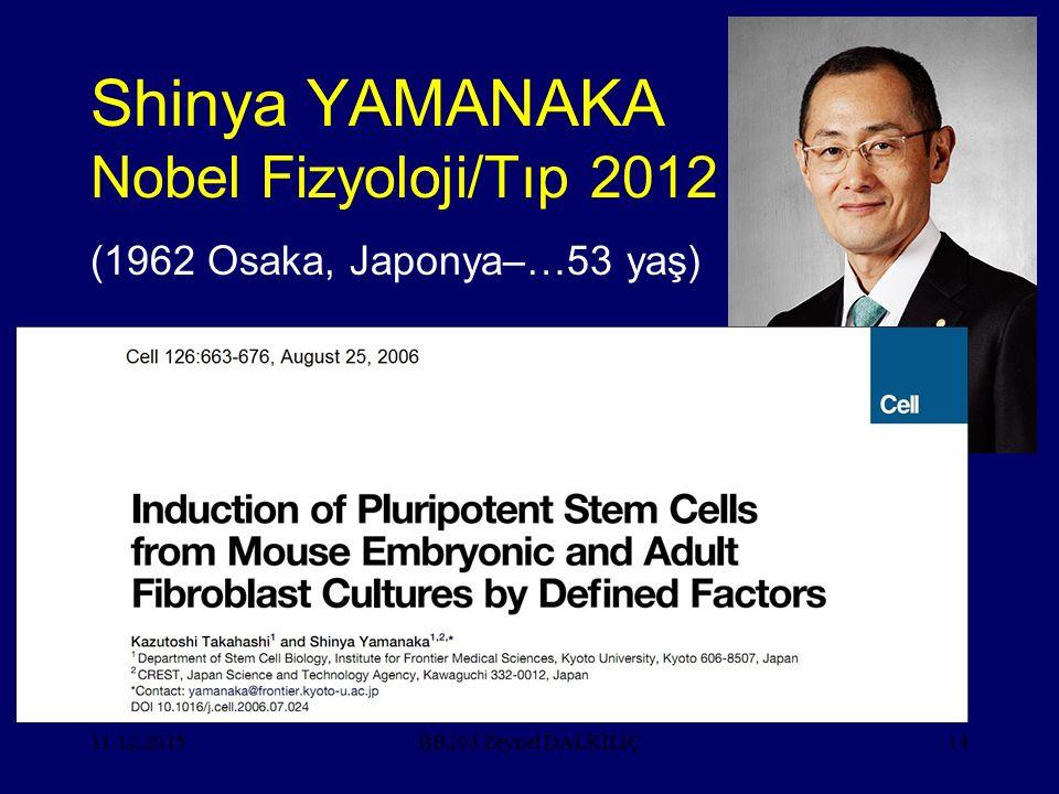 11.12.201514 Shinya YAMANAKA Nobel Fizyoloji/Tıp 2012 (1962 Osaka, Japonya–…53 yaş) BB203 Zeynel DALKILIÇ