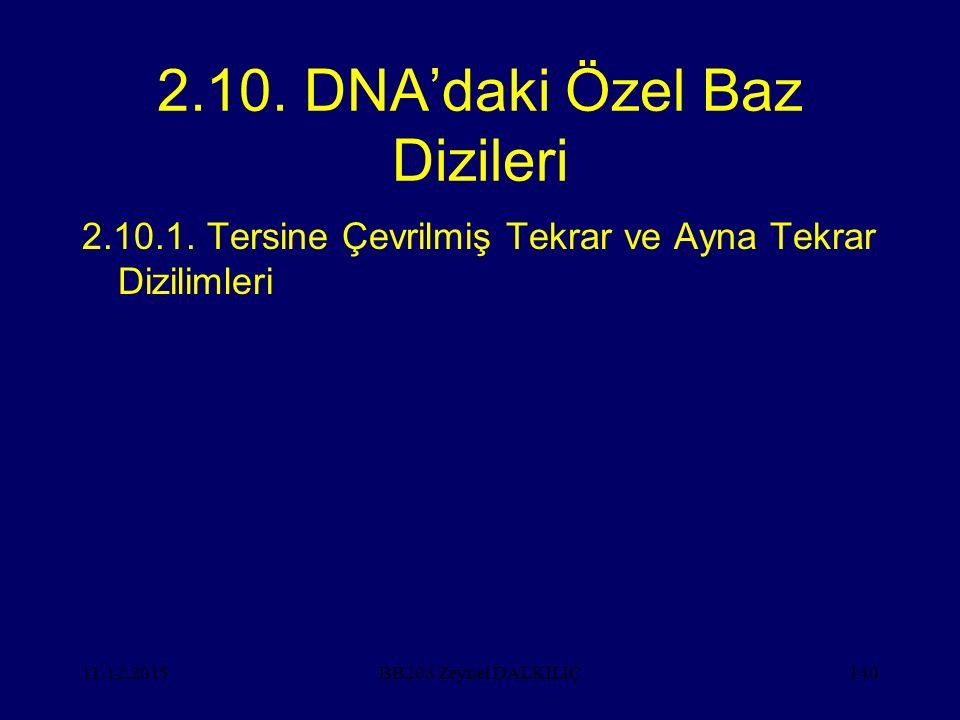 11.12.2015140 2.10. DNA'daki Özel Baz Dizileri 2.10.1. Tersine Çevrilmiş Tekrar ve Ayna Tekrar Dizilimleri BB203 Zeynel DALKILIÇ