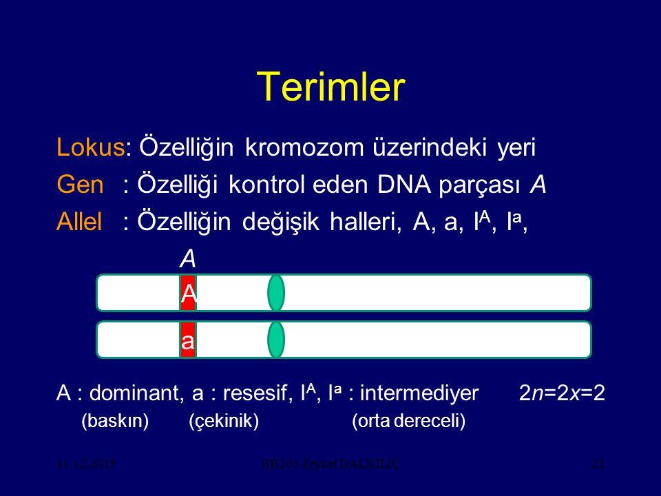 11.12.201522 Terimler Lokus: Özelliğin kromozom üzerindeki yeri Gen: Özelliği kontrol eden DNA parçası A Allel: Özelliğin değişik halleri, A, a, I A,