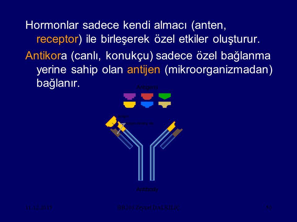 11.12.201550 Hormonlar sadece kendi almacı (anten, receptor) ile birleşerek özel etkiler oluşturur. Antikora (canlı, konukçu) sadece özel bağlanma yer