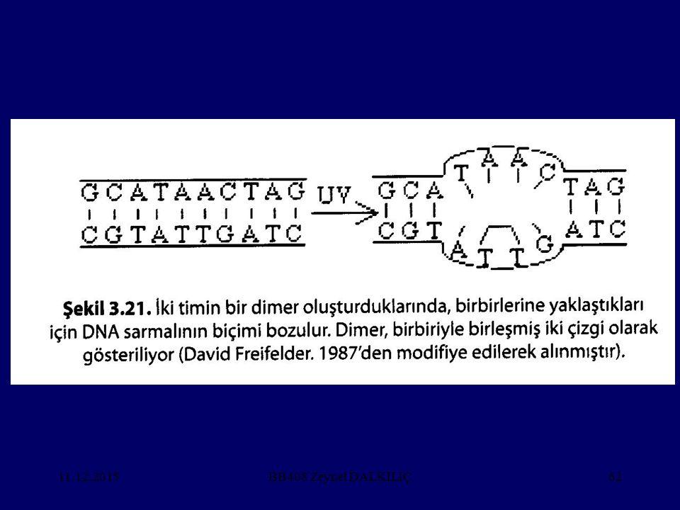 11.12.2015BB408 Zeynel DALKILIÇ62