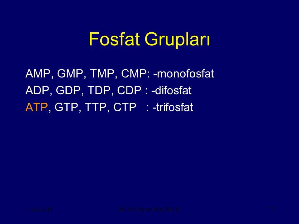11.12.201577 Fosfat Grupları AMP, GMP, TMP, CMP: -monofosfat ADP, GDP, TDP, CDP : -difosfat ATP, GTP, TTP, CTP : -trifosfat BB203 Zeynel DALKILIÇ
