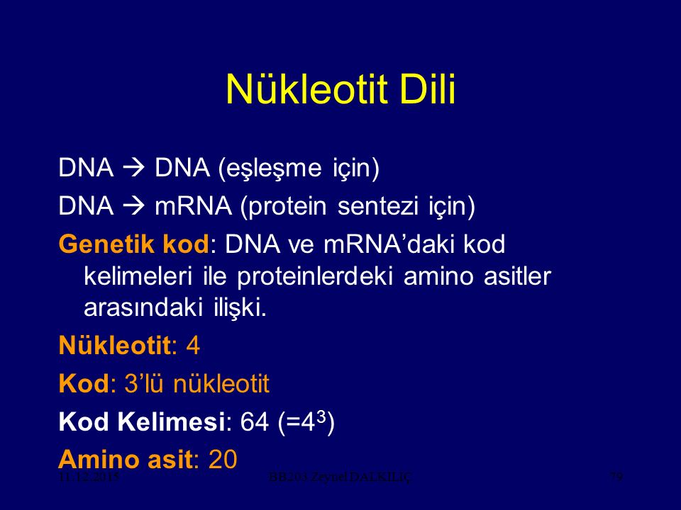 11.12.201579 Nükleotit Dili DNA  DNA (eşleşme için) DNA  mRNA (protein sentezi için) Genetik kod: DNA ve mRNA'daki kod kelimeleri ile proteinlerdeki