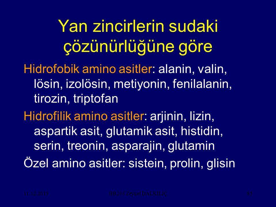 Yan zincirlerin sudaki çözünürlüğüne göre Hidrofobik amino asitler: alanin, valin, lösin, izolösin, metiyonin, fenilalanin, tirozin, triptofan Hidrofilik amino asitler: arjinin, lizin, aspartik asit, glutamik asit, histidin, serin, treonin, asparajin, glutamin Özel amino asitler: sistein, prolin, glisin 11.12.2015BB203 Zeynel DALKILIÇ85