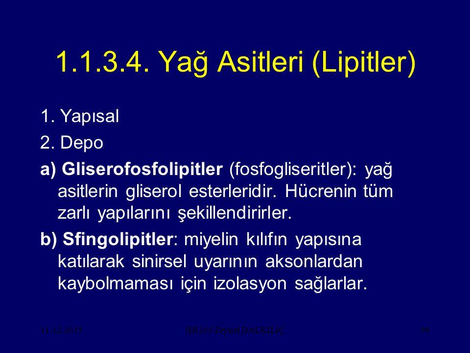 11.12.201596 1.1.3.4. Yağ Asitleri (Lipitler) 1. Yapısal 2. Depo a) Gliserofosfolipitler (fosfogliseritler): yağ asitlerin gliserol esterleridir. Hücr
