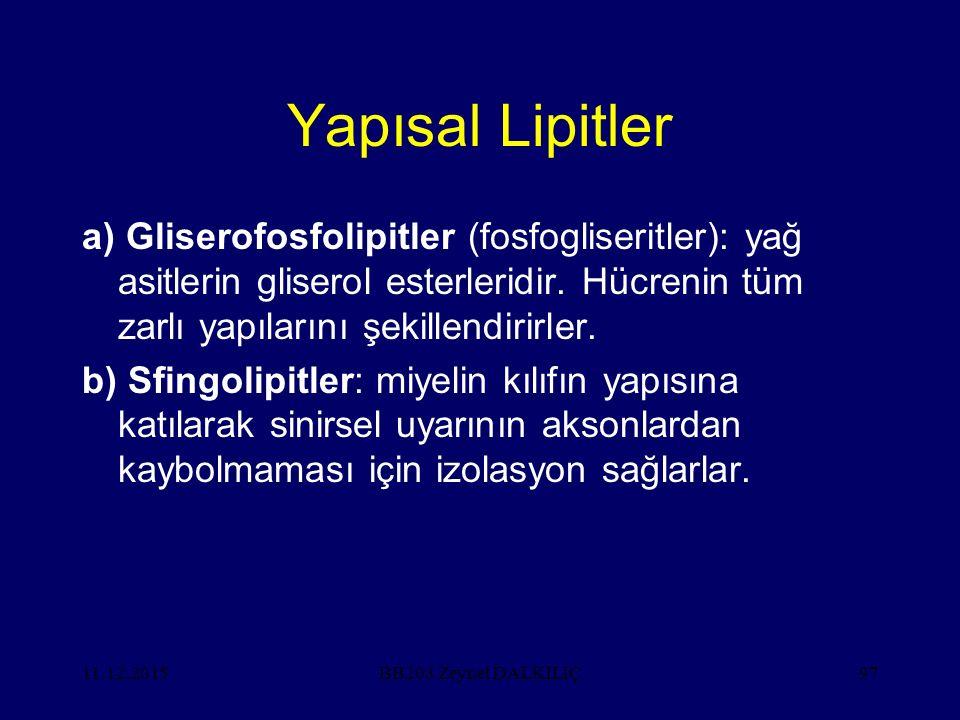 11.12.201597 Yapısal Lipitler a) Gliserofosfolipitler (fosfogliseritler): yağ asitlerin gliserol esterleridir. Hücrenin tüm zarlı yapılarını şekillend