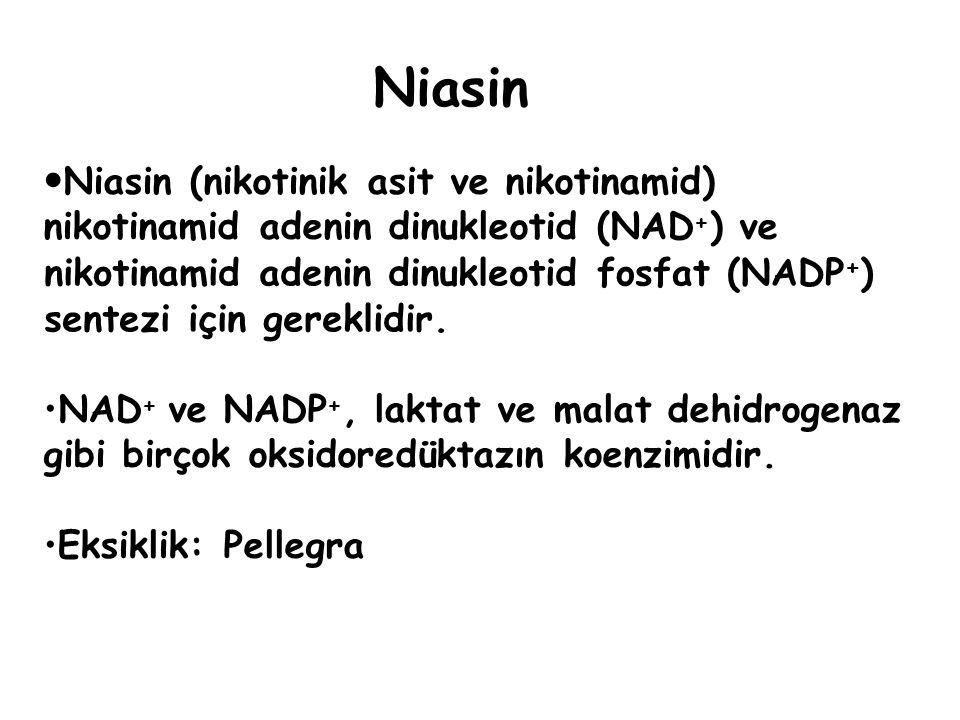 Niasin Niasin (nikotinik asit ve nikotinamid) nikotinamid adenin dinukleotid (NAD + ) ve NAD + ve NADP +, laktat ve malat dehidrogenaz gibi birçok oksidoredüktazın koenzimidir.