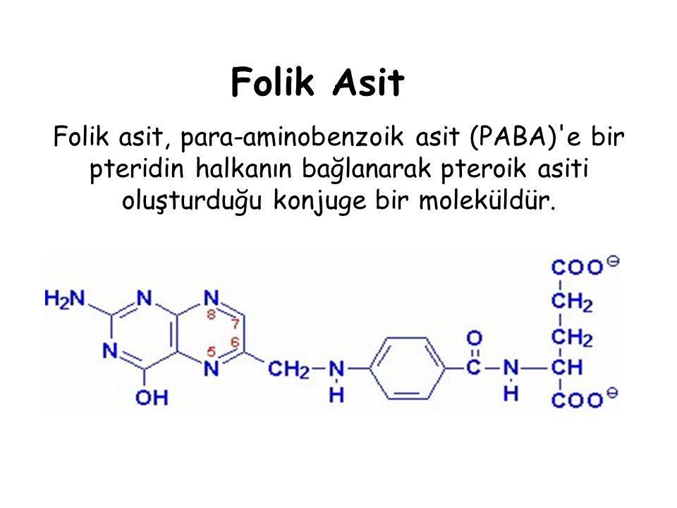 Folik Asit Folik asit, para-aminobenzoik asit (PABA) e bir pteridin halkanın bağlanarak pteroik asiti oluşturduğu konjuge bir moleküldür.