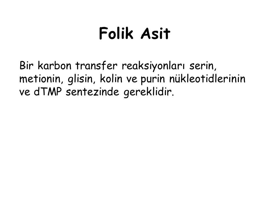 Folik Asit Bir karbon transfer reaksiyonları serin, metionin, glisin, kolin ve purin nükleotidlerinin ve dTMP sentezinde gereklidir.